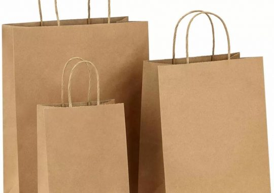 What Are The Advantages Of Wholesale Paper Bags?